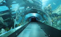 Miami Seaquarium 14
