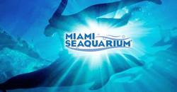 Miami Seaquarium 13