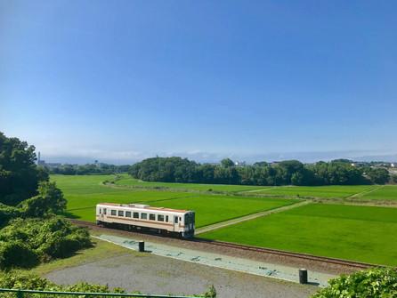 緑の絨毯とひたちなか海浜鉄道