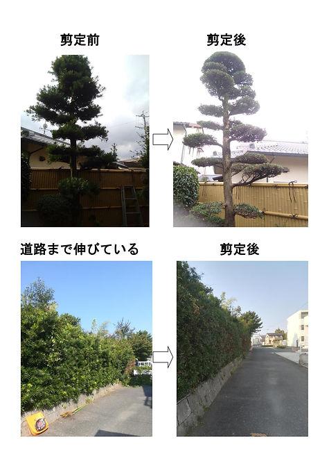0001-4.jpg