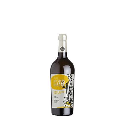 Modus Bibendi Orange Wine