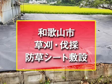 和歌山市 草刈・伐採・防草シート敷設・不用品処分