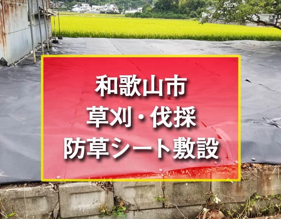 便利屋和歌山 株式会社便利屋和歌山 和歌山市 草刈 伐採 防草シート敷設 不用品処分
