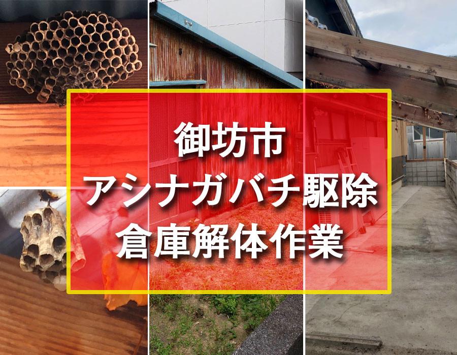 便利屋和歌山 御坊市 アシナガバチ駆除 倉庫解体作業
