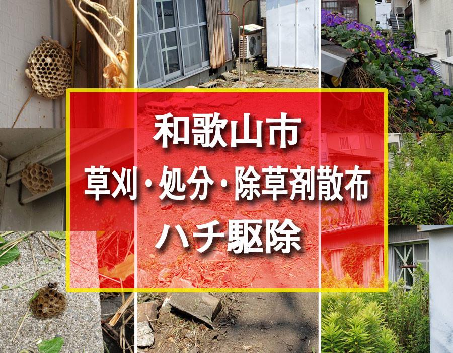 便利屋和歌山 和歌山市 草刈・処分・除草剤散布・ハチ駆除
