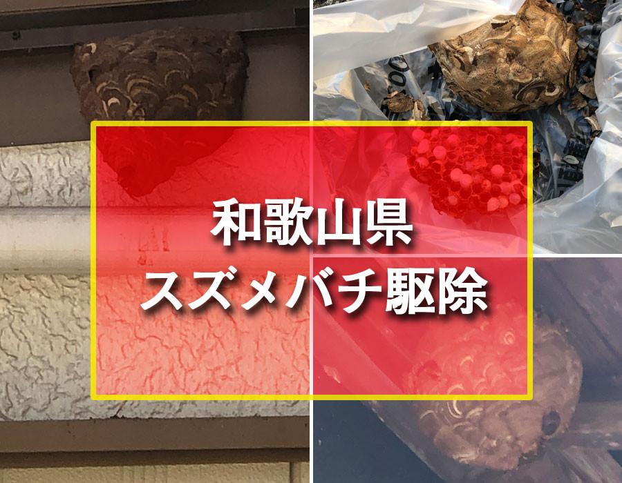 便利屋和歌山 和歌山県 スズメバチ駆除 スズメバチの巣駆除