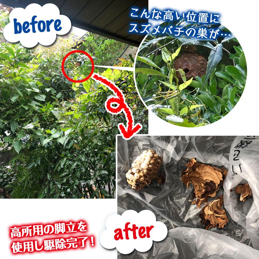 2件目 便利屋和歌山 和歌山市 スズメバチの巣駆除