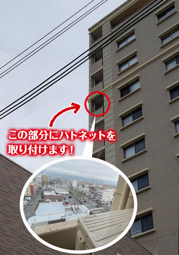 便利屋和歌山 ハトの糞掃除とハトネット取り付け場所
