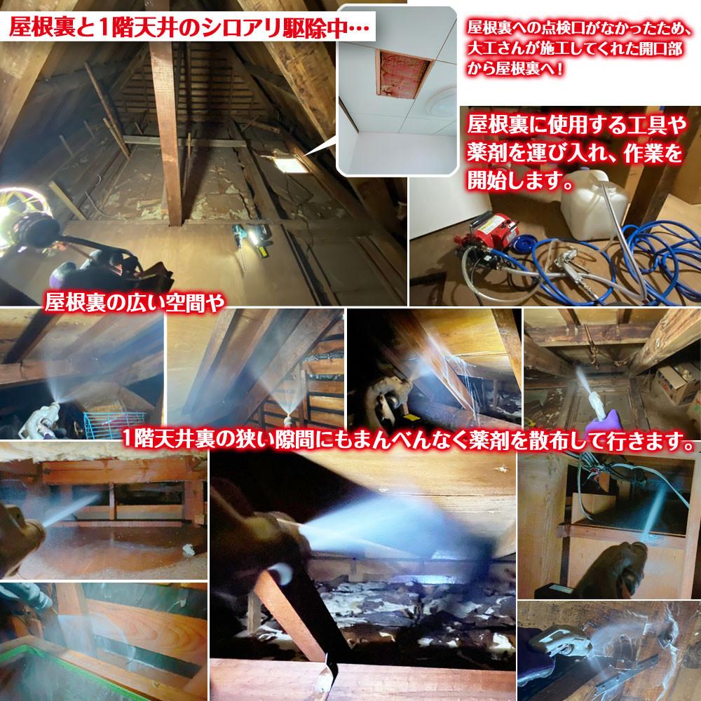 便利屋和歌山 兵庫県 屋根裏 一階天井裏 シロアリ駆除消毒作業