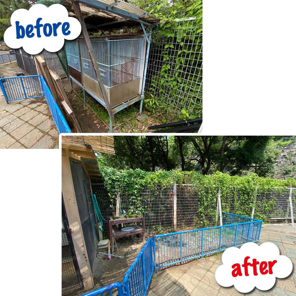 便利屋和歌山 和歌山城公園動物園 鳥小屋撤去作業前と後
