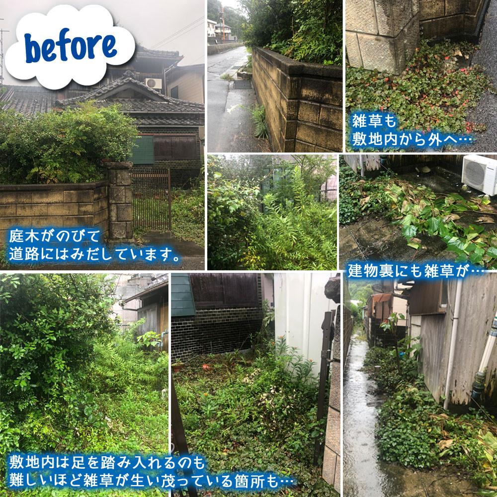 便利屋和歌山 和歌山市 草刈 庭木の伐採 防草シート敷設 作業前