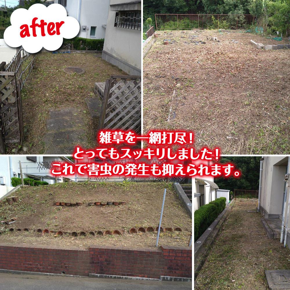 便利屋和歌山 草刈り・除草剤散布作業終了