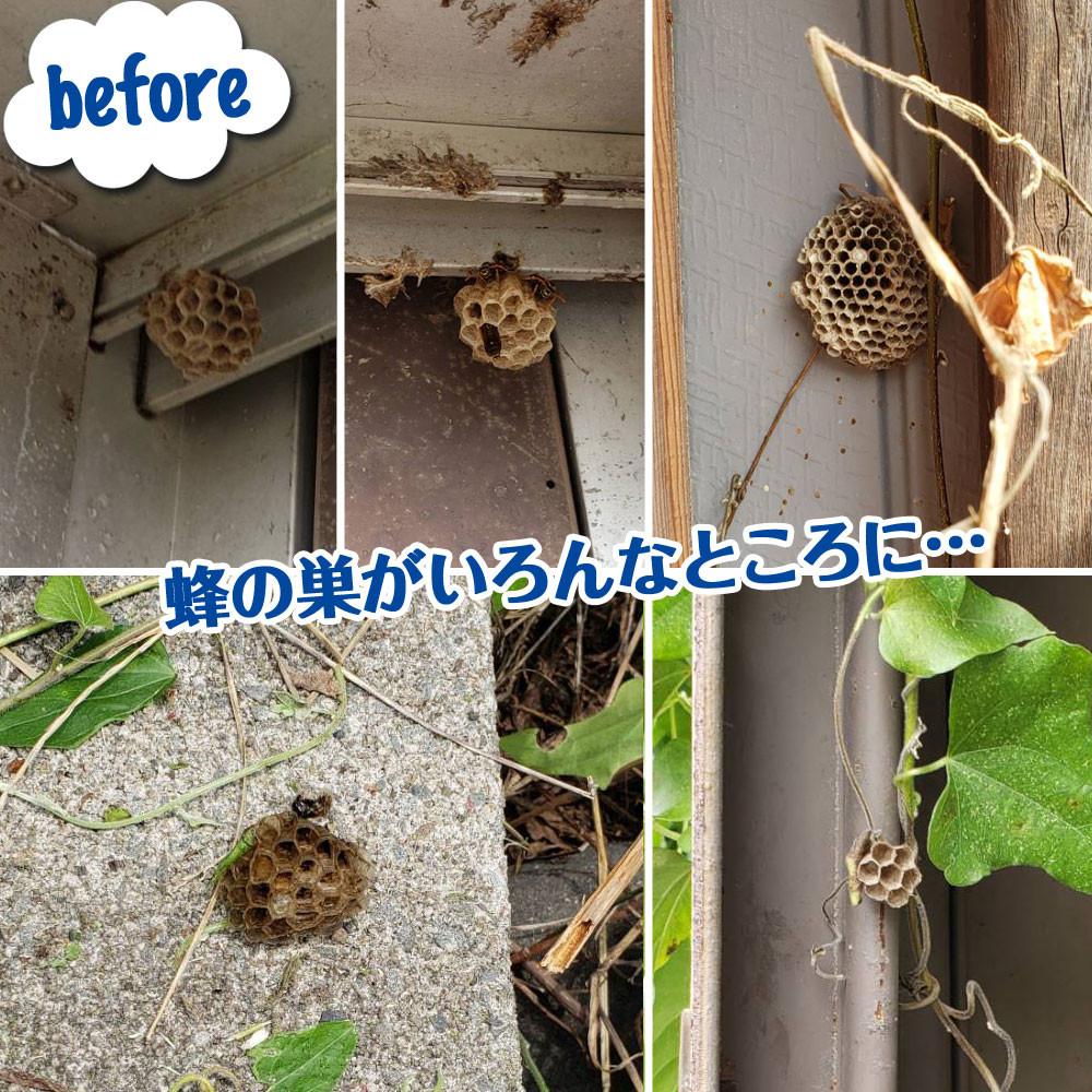 便利屋和歌山 蜂の巣駆除前