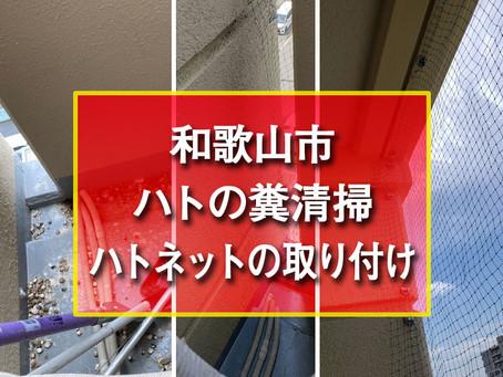 和歌山市 ハトの糞清掃とハトネットの取り付け