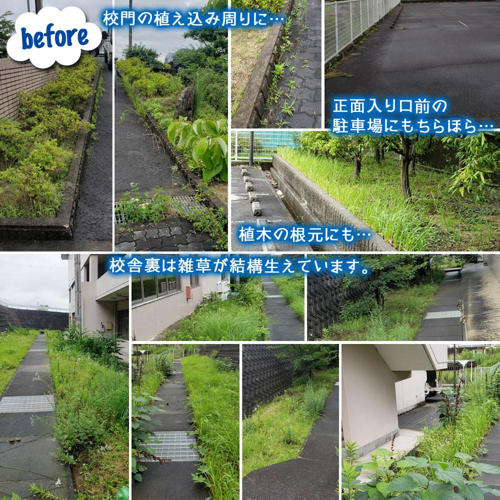 便利屋和歌山 和歌山看護専門学校さま  草刈り作業前