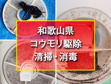 和歌山県 コウモリ駆除清掃・消毒