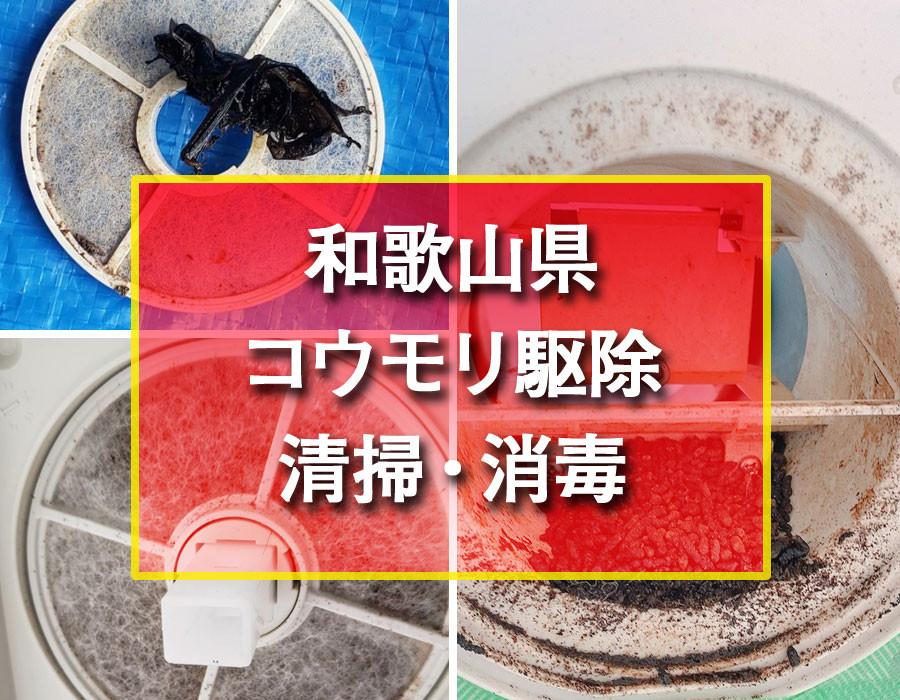 株式会社便利屋和歌山 和歌山県 コウモリ駆除清掃・消毒