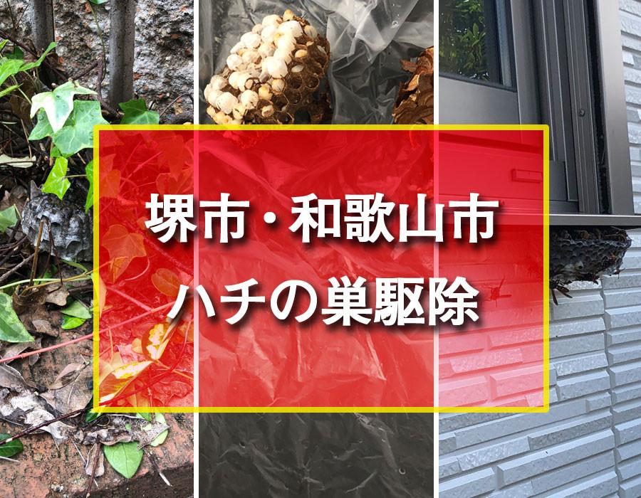 堺市 和歌山市 ハチの巣駆除