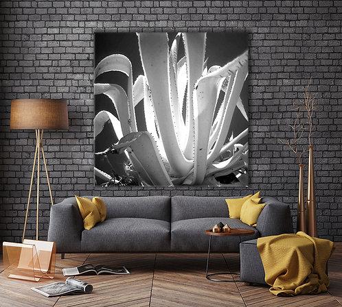 Tropical Plant I