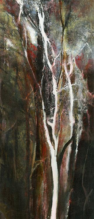 Lueur de la forêt