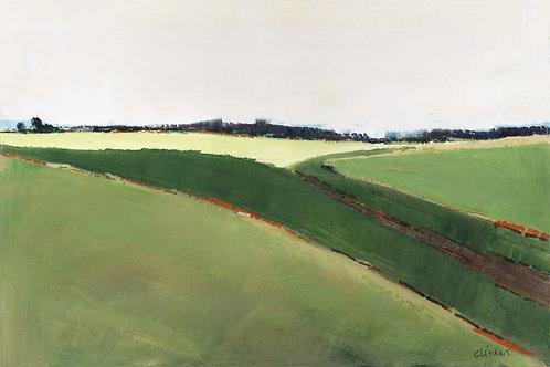 Landscape 388