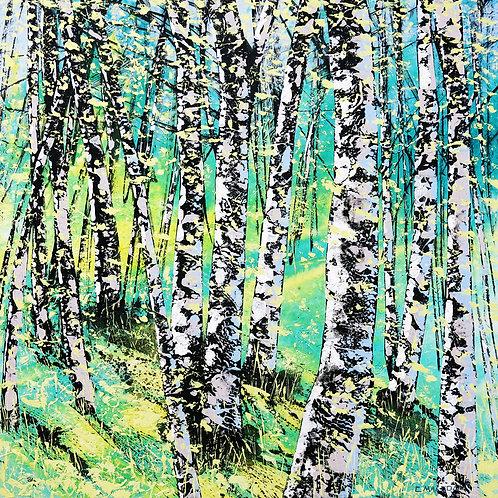 Treescape 11916