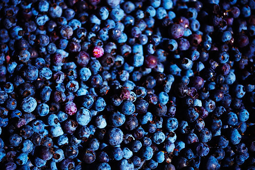 Blueberries II
