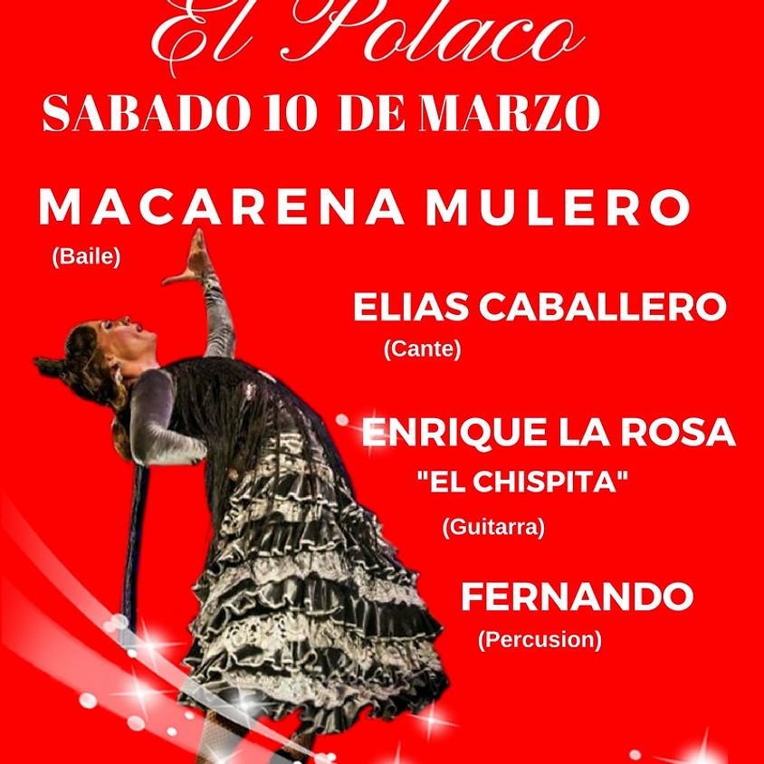 "Macarena Mulero - Tablao ""Flamenco El Polaco"""