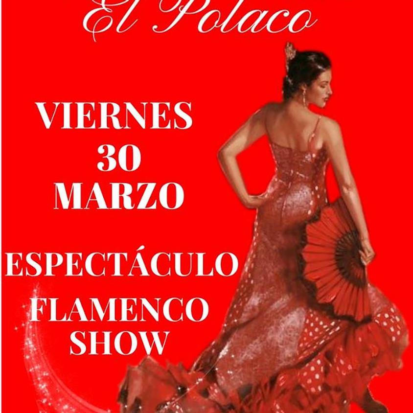 Flamenco show Dinner