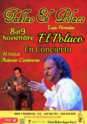 Luis Heredia En Concierto