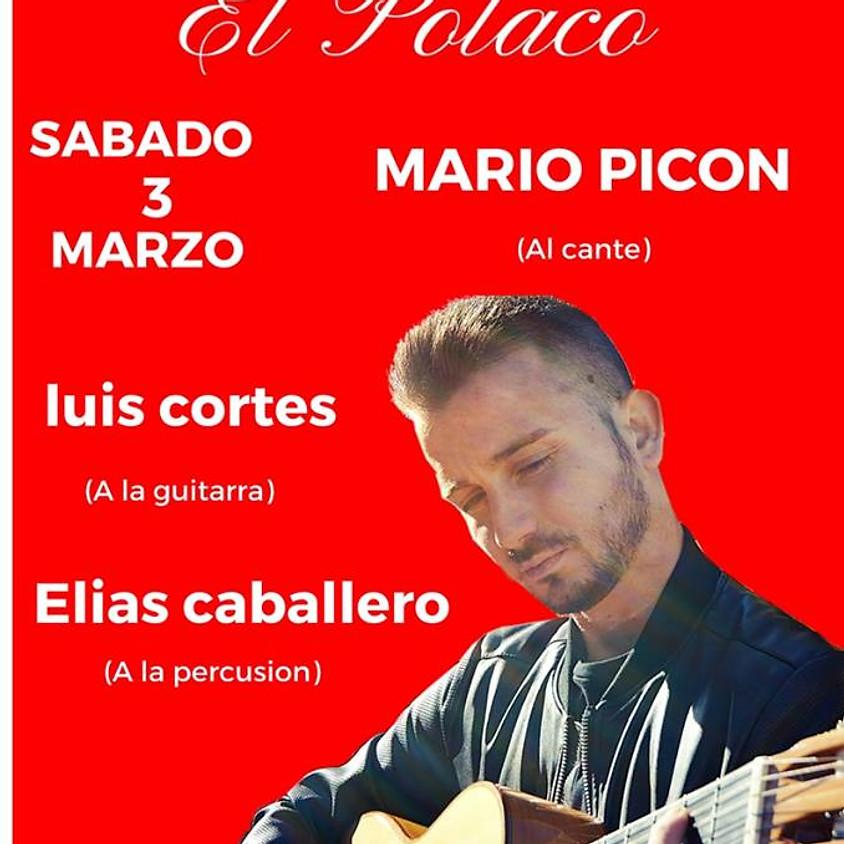 Mario Picon