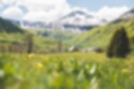 eh-paysage-monts-du-cantal-0110-web.jpg