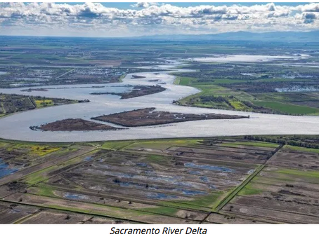 California State Water Board settles lawsuit with environmental groups – great news for water, fish,