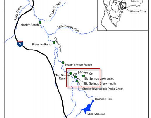 Big Springs Ranch Salmon Restoration Project