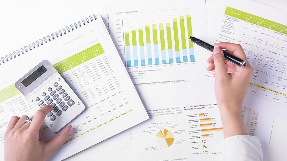 Business analytics and visualization