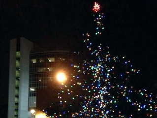 Pontiac lights Tree of Hope