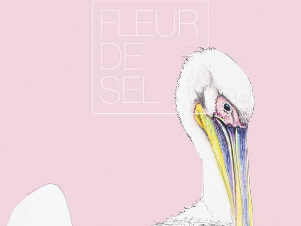 2018-08-22 pelican.jpg