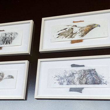 Sandra Chiocchetti AUSSTELLUNG SPENDENGALA Friends of African Wildlife
