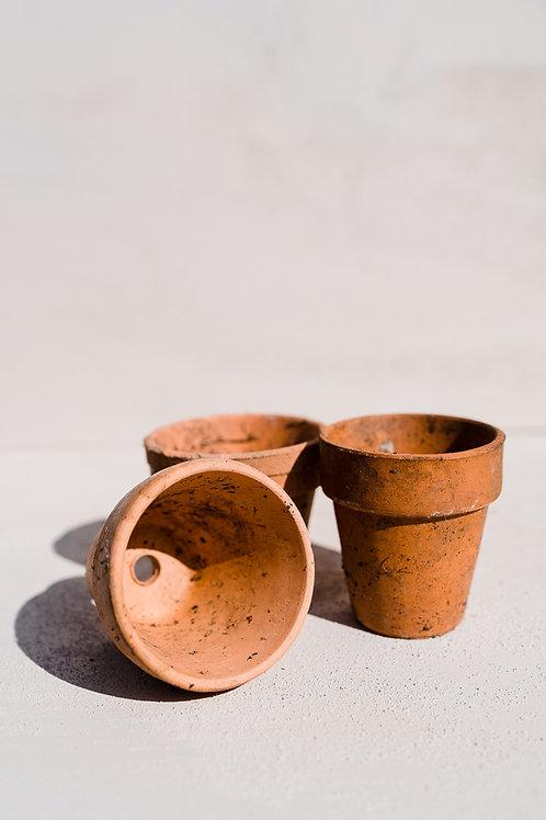 Small terracotta flower pots