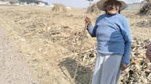 El Día de la Tierra: entre la crisis ambiental y económica