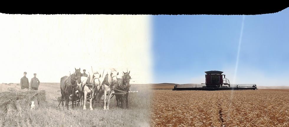 generations-of-grain-fade2.png