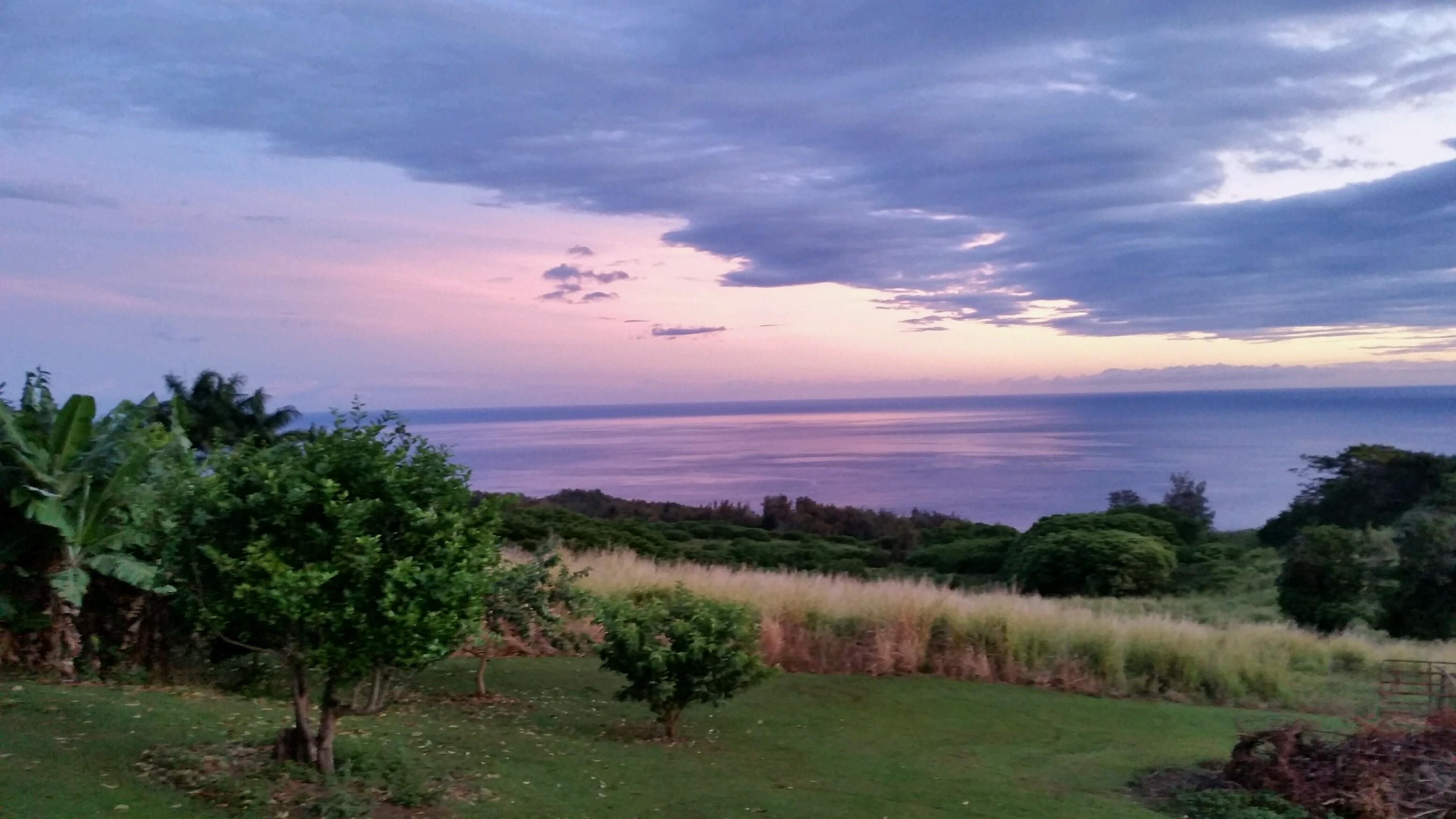 Hamakua Sunrise