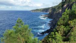 Hamakua Coast