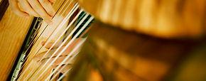 Harpe Celtique Musique Caudan