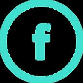 facebook-2-icon-17-40e0d0-253.png