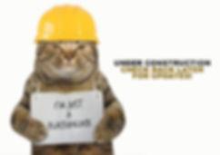 CatPlaceholder.jpg