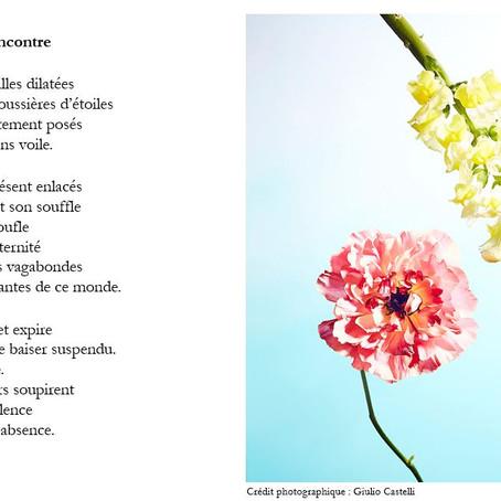 Expoésie florale en duo avec Sophie Cohendet