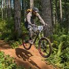 FOREST BIKE.jpg