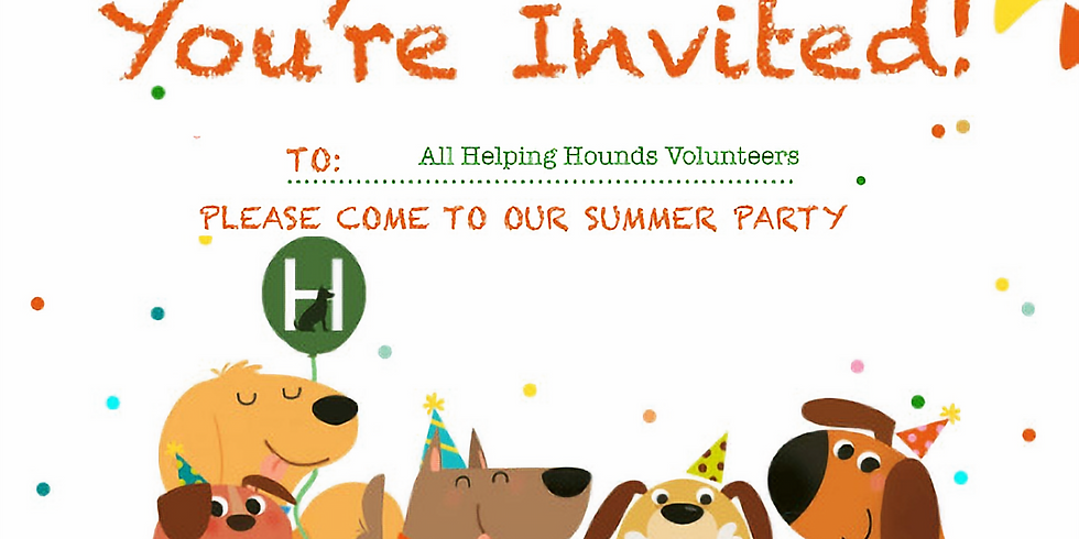 Volunteer Summer Party
