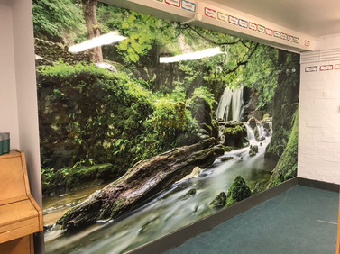 Large Format Wall Prints